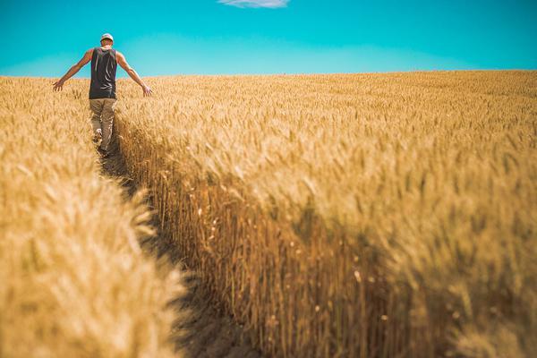 Skutki wypadków w gospodarstwach rolnych